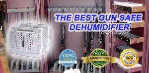 What is the Best Gun Safe Dehumidifier?