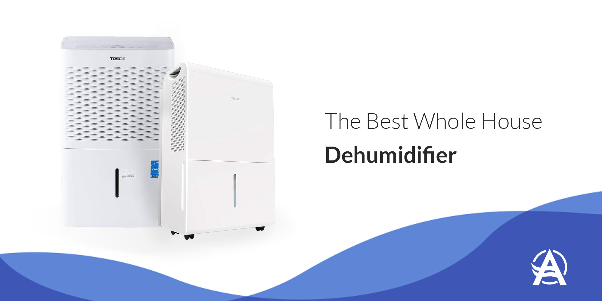 Best Whole House Dehumidifier