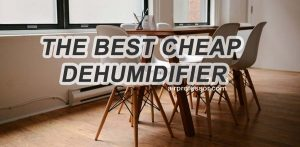 What Is The Best Cheap Dehumidifier?
