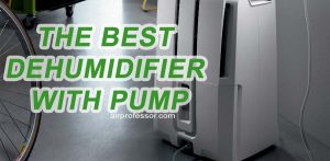 Importance of a Dehumidifier With Pump