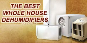 best-whole-house-dehumidifiers