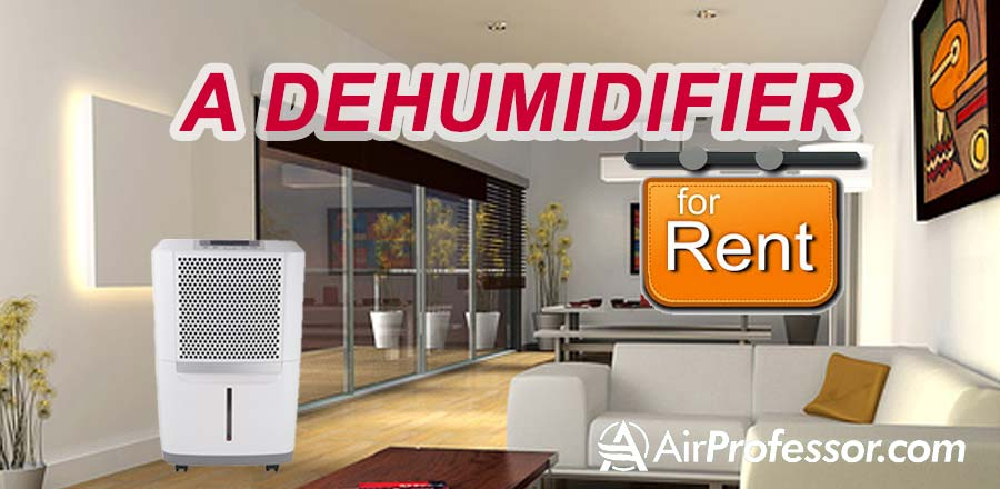renting-a-dehumidifier