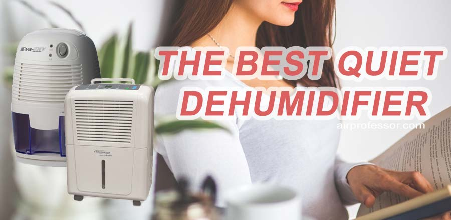 the-best-quiet-dehumidifier