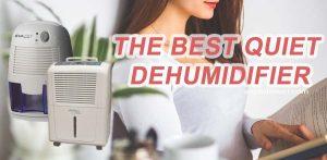 the-best-quiet-dehumidifier