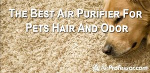 Make A Wise Choice: Best Air Purifier For Pets Hair And Odor