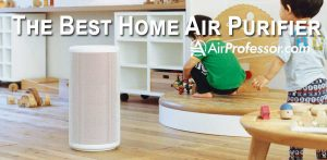 Find The Best Home Air Purifier: A Complete Review