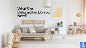 What Size Dehumidifier Do I Need